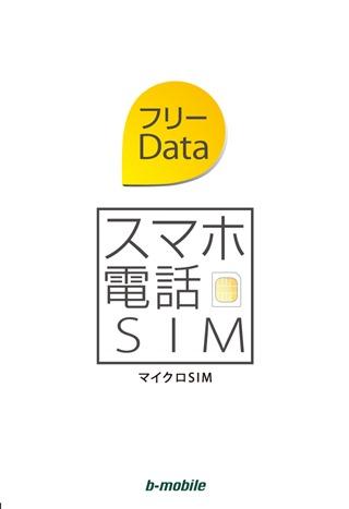 GM_スマホ電話SIM_datafree_micro_ol
